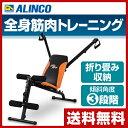 アルインコ(ALINCO) マルチアームジム G3100 マルチジム シットアップベンチ レッグカール アームカール 腹筋台 腹筋…