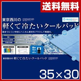 供东京西川(西川产业)酷回声特别冰(COOLECHO EX ICEα)轻量冷感觉枕头垫衬(35*30)PGP0504381蓝色西川枕头使用的冷却垫子枕头垫衬