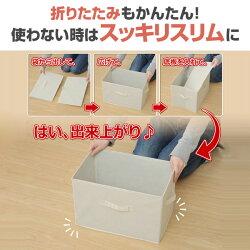 山善(YAMAZEN)収納ボックスカラーボックス対応YTCT-1P/1PF