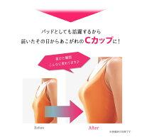 【送料無料】バストアップ新提案!アップルCのバストアップで美乳も豊乳も思いのまま。バスト吸引法で女性ホルモンの分泌を促し、周りの余分な脂肪も集めてバストアップ♪あこがれの谷間もきれいなバストラインも着けるだけで乳トレ完了!【アップルC・D】