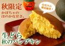 【ハロウィン限定】 かぼちゃの生どら焼き+2種類セット 10個入り