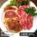 ジンギスカン 送料無料ラム肉 セット 焼肉 セット バーベキュー セットの肉の決定版!肉の卸問屋あおやまのジンギスカ…