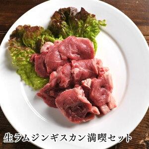 【送料無料】ラム肉 ジンギスカン 生ラムジンギスカン満喫セット北海道のお肉屋さんあおやまで人気のジンギスカン用手切り生ラムをお得な大盛りセットで満喫!生ラムジンギスカン、生