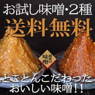 兩個物種的精細味噌醬既定 yamadaya 味道相比 ~ 味噌湯 60 分鐘 ~