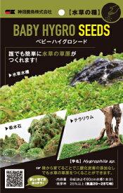 カミハタ 水草の種 ベビーハイグロシード  草原がこんなに簡単に!
