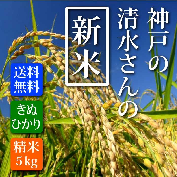 【送料無料】新米29年産 きぬひかり 神戸の清水さんの新米【キヌヒカリ】5kg