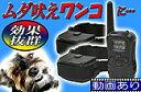 無駄吠え防止首輪!【充電式ペット・トレーニングカラー2台セット】