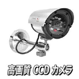 本物!赤外線CCD防犯カメラ【赤外線CCD防犯カメラ INFRARED CCD】