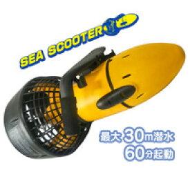 お手頃価格!速い!【シースクーター EM3001】で海を制覇!
