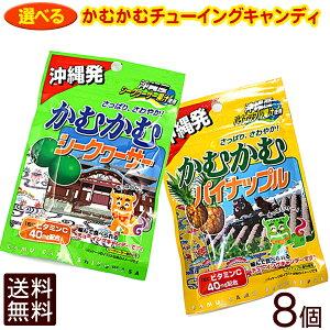 【メール便!送料無料】選べる!かむかむキャンディ8個セット