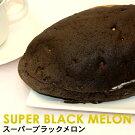 スーパーブラックメロン(オキコパン)