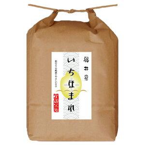 堀商店 令和3年産 福井県産いちほまれ5kg|お取り寄せ