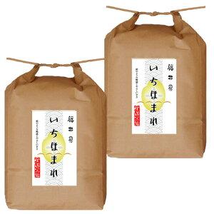 堀商店 令和3年 福井県産いちほまれ10kg|お取り寄せ
