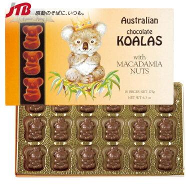 【オーストラリアお土産】KoalaKing(コアラキング)|マスコットコアラマカダミアナッツチョコ1箱|チョコレート【お土産食品おみやげオーストラリア海外みやげ】オーストラリアチョコレート