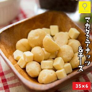 マカダミアナッツ&チーズ 35g ×6パック 食べきりサイズ 送料無料 おつまみ研究所