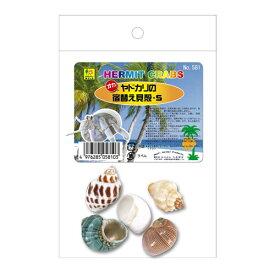 [三晃商会]オカヤドカリの宿替え貝殻(S)