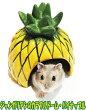[レインボー]小型ハムスター用陶器製ハウスジャンガリアンのカラフルドーム・パイナップル