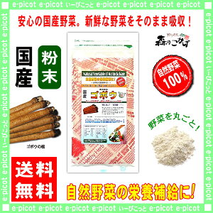 A国産ゴボウ粉末(100g)[やさいパウダー100%]野菜ジュースの素■国産野菜粉末(牛蒡)ごぼう