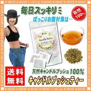 2キャンドルブッシュ[2g×30p入]食物繊維が豊富◆ゴールデンキャンドルハネセンナ