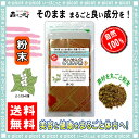 【送料無料】どくだみ茶 (粉末)パウダー [100g] 森のこかげ 健やかハウス ドクダミ茶 ドクダミ ドクダミ草 どくだみ草