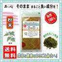 【送料無料】桑の葉茶 (粉末)パウダー [100g] 森のこかげ 健やかハウス 桑葉 くわの葉 くわ葉 茶 クワの葉 クワ葉
