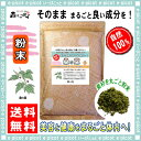 【送料無料】桑の葉茶 (粉末)パウダー [500g] 森のこかげ 健やかハウス