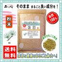【送料無料】松葉 (粉末)パウダー [500g] マツバ まつば 森のこかげ 健やかハウス