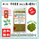 【送料無料】モロヘイヤ茶 (粉末)パウダー [100g] 森のこかげ 健やかハウス もろへいや茶