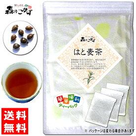6【送料無料】 ハトムギ茶 (4g×50p)「ティーバッグ」≪はと麦茶 100%≫ 鳩麦茶 はとむぎちゃ 健康茶 ティーパック ハトムギ ハト麦 森のこかげ 健やかハウス