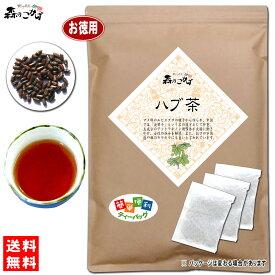 【お徳用TB送料無料】 ハブ茶 (5g×100p 内容量変更)「ティーパック」≪はぶ茶 100%≫ 森のこかげ 健やかハウス