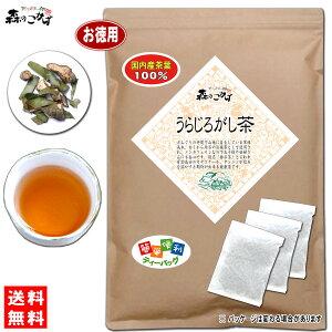 7国産うらじろがし茶(3g×80p)「ティーパック」≪ウラジロガシ茶100%≫裏白樫茶