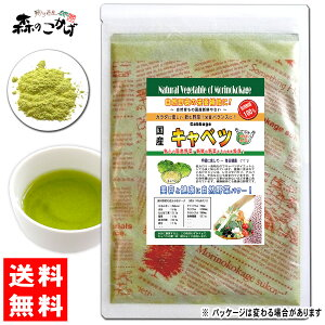 A国産キャベツ粉末(100g)[やさいパウダー100%]野菜ジュースの素■国産野菜粉末