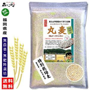 □【送料無料】 森のこかげ 丸麦 750g 無農薬 特別栽培