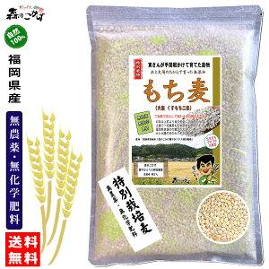 □【送料無料】 森のこかげ もち麦 500g 無農薬 特別栽培