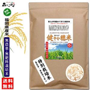 □【送料無料】 森のこかげ 健やか穂米 1kg 玄米 白米 無農薬 無肥料米