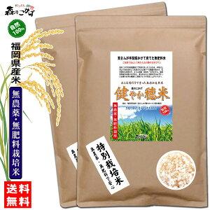 □【送料無料】 森のこかげ 健やか穂米 2kg(1kg×2個セット) (選べるお米 玄米 or 白米) 無農薬 無肥料米