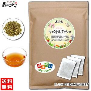 3キャンドルブッシュ[2g×80p]食物繊維が豊富◆ゴールデンキャンドルハネセンナ
