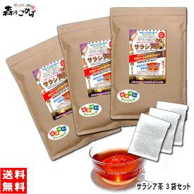 S【送料無料】 サラシア茶 (3g×100p)×3袋セット ティーパック ≪さらしあ茶≫ コタラヒム茶 インド産 健康茶 ティーバッグ 森のこかげ 健やかハウス 売れ筋