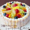 母の日20207種のフルーツのショートケーキLサイズ(約20cm)誕生日ケーキ バースデーケーキ サプライズ※他商品と同梱…