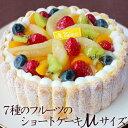 お中元 ギフト プレゼント 7種のフルーツのショートケーキMサイズ(約16cm)誕生日ケーキ バースデーケーキ サプライズ※他商品と同梱不可