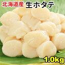 【送料無料】北海道産!生ほたて貝柱1kg 個別凍結だから便利な帆立/冷凍生/刺身/焼き/ホタテバター/パスタ/海鮮/貝類…