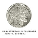 【当店グレード:E】【白銅貨】バッファローニッケル硬貨(1913〜1938年)(5セント/Nickel/5Cent/アメリカ合衆国)「コイン」