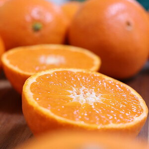津之輝 秀品 2kg つのかがやき 宮崎県産 柑橘 新柑橘 新品種 果物 送料無料 家庭用 産直 産地直送 豊洲 お取り寄せグルメ