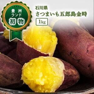 [送料無料] 五郎島金時 さつまいも 1kg 石川県産 【加賀伝統野菜】焼いも 甘藷 サツマイモ 家庭用 贈答 ギフト