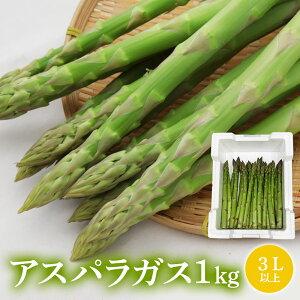 国産アスパラガス 3Lサイズ 1kg 家庭用 産直 産地直送 豊洲 お取り寄せグルメ