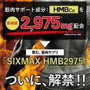 【限定特価】【送料無料】HMB サプリ シックスマックス2975 HMBを超高配合2975mg 筋肉増量サプリメント 筋肉を鍛える皆様へ SIXMAX ダイエッ...