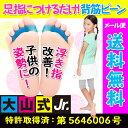 Jr_01_560