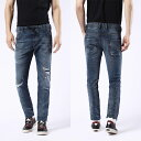 Ds16ss0675m 1