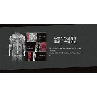 百利达左右部位其他身体组成计内部扫描双重(RD-800)[取消、变更、退货不可]