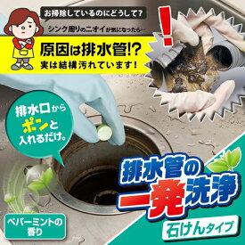 排水管の一発洗浄 石けんタイプ [キャンセル・変更・返品不可]